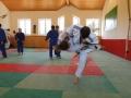trainingslager_adnet_2_20130904_1200808955