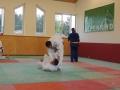 trainingslager_adnet_34_20130904_1052780214