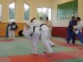 trainingslager_adnet_37_20130904_1726459726