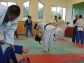 trainingslager_adnet_39_20130904_1206613832